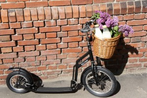 trottinette scooter footbike