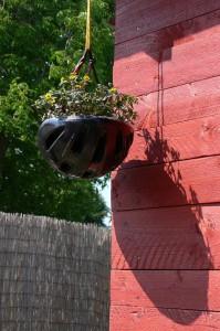 helma květináč